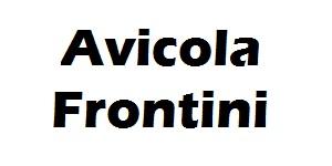 avicola frontini